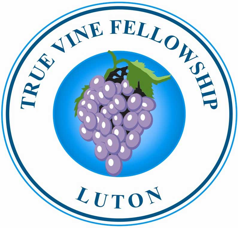True Vine Fellowship